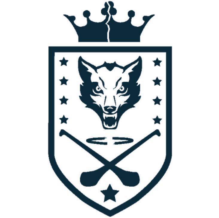 Wolves Hurling Club Play Hurling